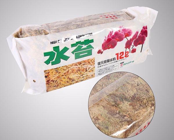 мох сфагнум из Китая