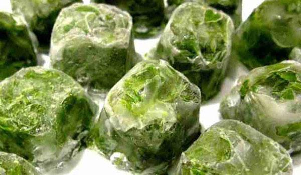 ледяные кубики шпината