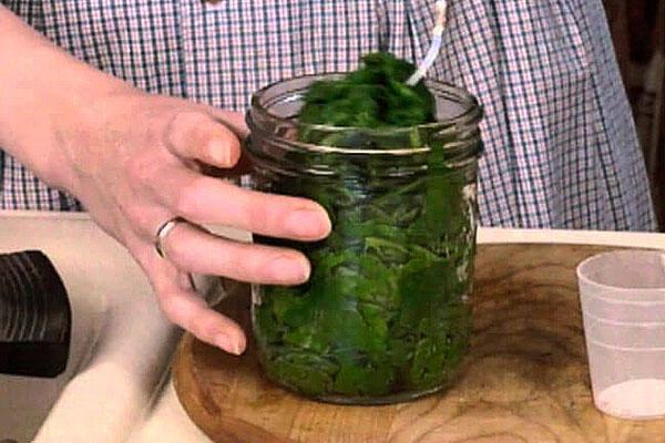 консервирование шпината