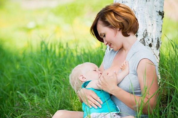 кормящим мамам нельзя употреблять момордику
