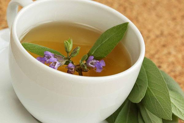 чай из шалфеем луговым