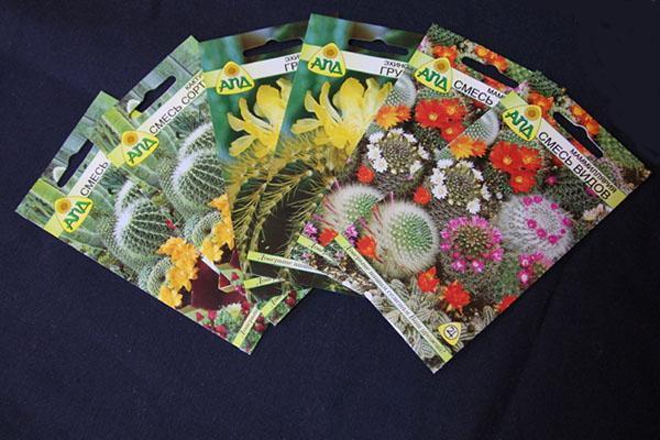 покупные семена кактусов