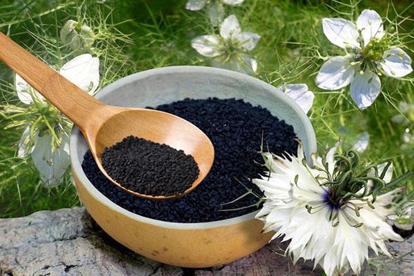 зерна черного тмина
