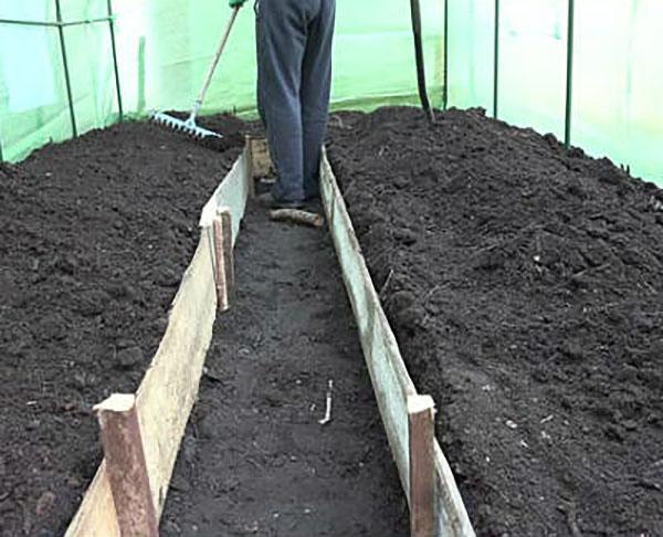 плодородная почва для томатов