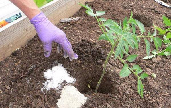 улучшение состава почвы