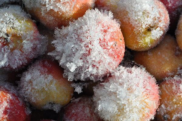заморозка яблок на зиму