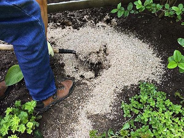 вермикулит в саду
