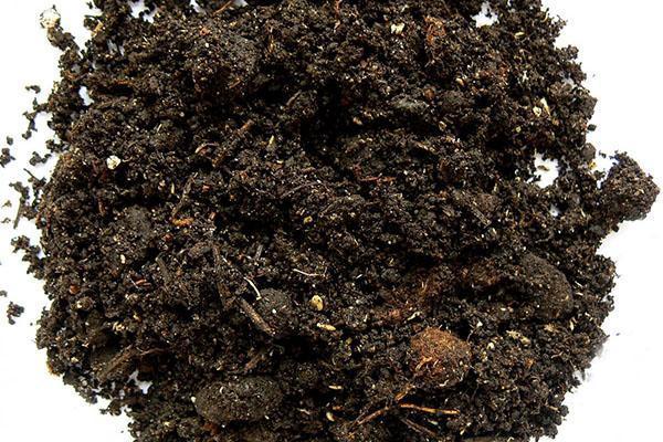разрыхляем почву вермикулитом