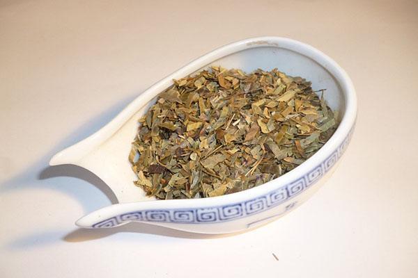 сухая агава