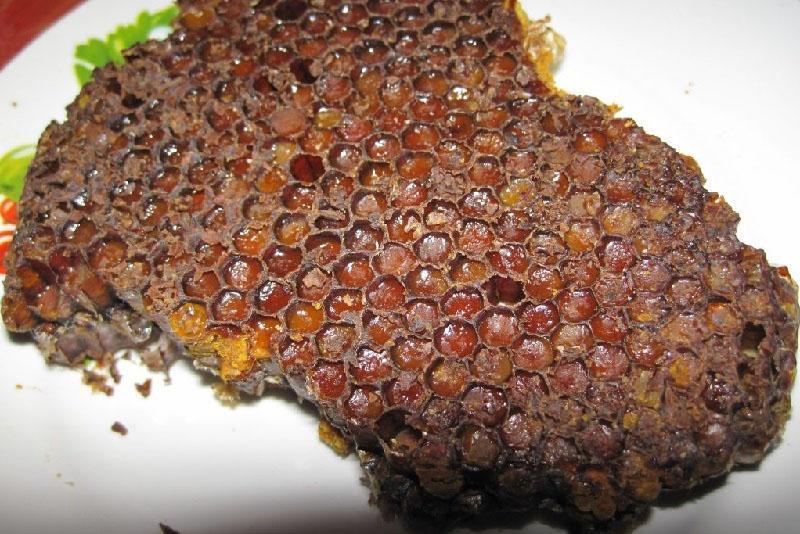 пчелиная перга запечатанная в сотах