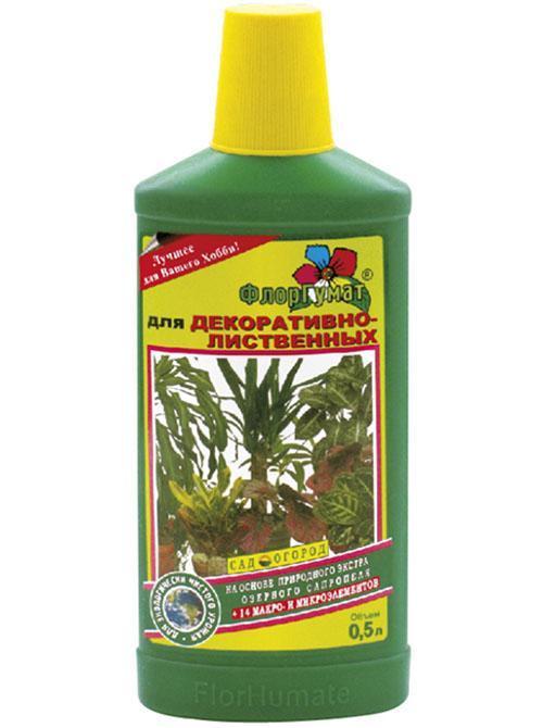 удобрение для декоративных растений
