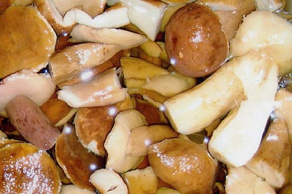 засолка белых грибов