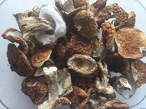 целые сушеные белые грибы