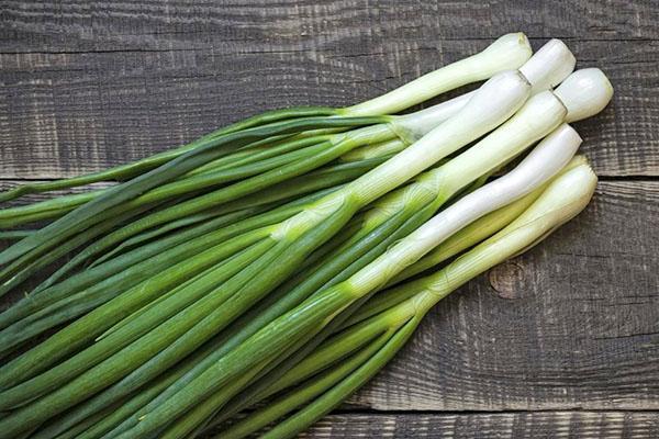сочный зеленый лук