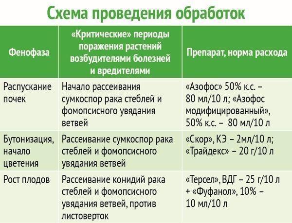 схема обработок против вирусных болезней