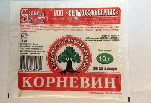 препарат корневин для томатов