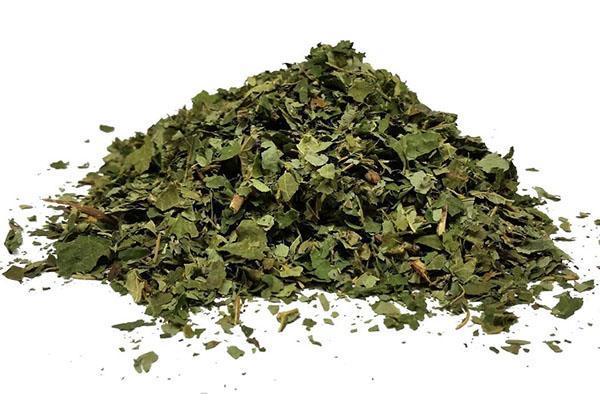 измельченные листья лещины
