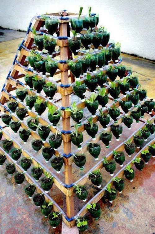 пирамида из пластиковых бутылок
