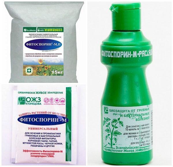 фитоспорин-м в разных упаковках