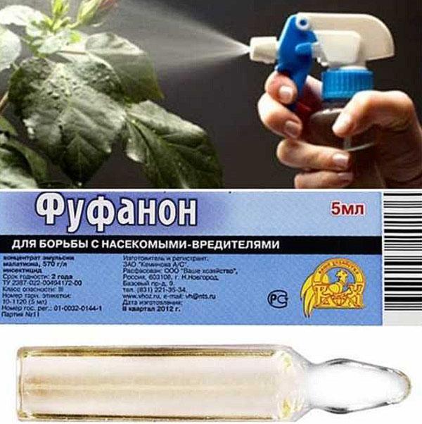 препарат для борьбы с насекомыми-вредителями