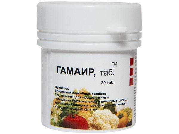 инструкция по применению таблеток Гамаир