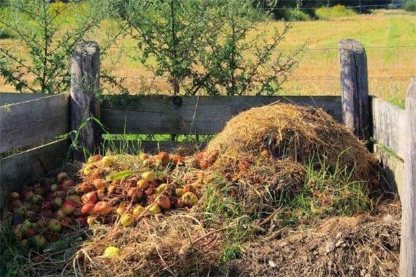 опилки в приготовлении компоста