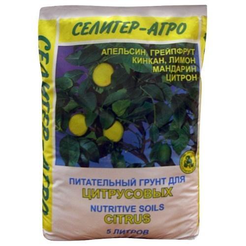 почва для мандарина