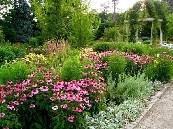 садовая алея