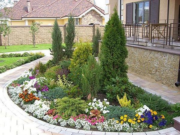 миксбордер из хвойников и цветущих растений