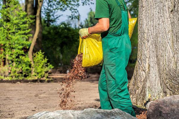 подкисление почвы опавшей листвой