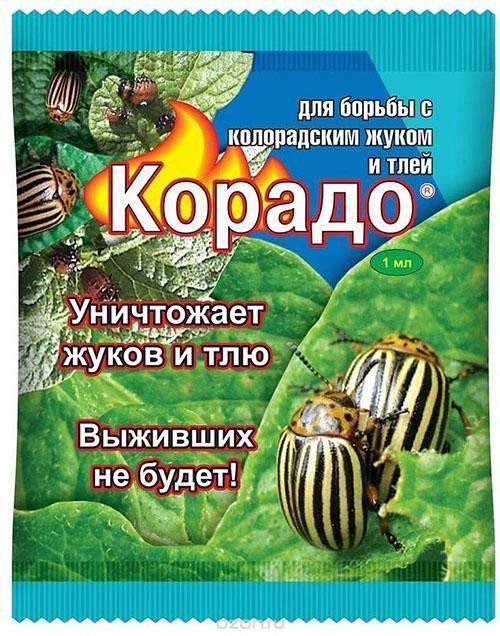 корадо от колорадского жука