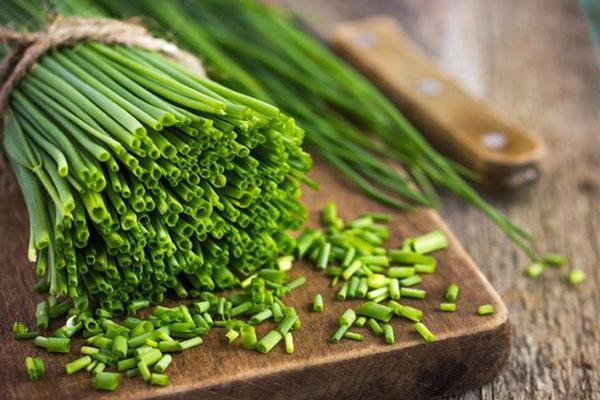 витаминная зелень для салата
