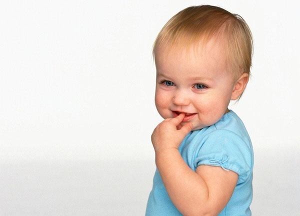 малышам можно сливу в небольшом количестве