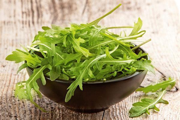 польза и вред салата руккола