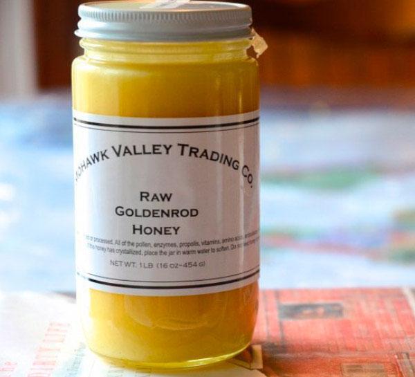 мед золотарника