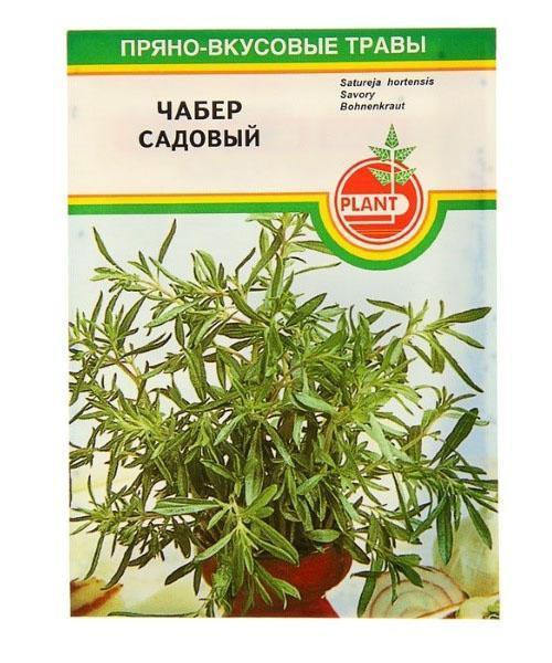 чабер посев семян на рассаду