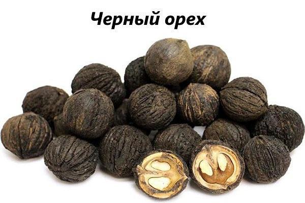 черный орех в народной медицине