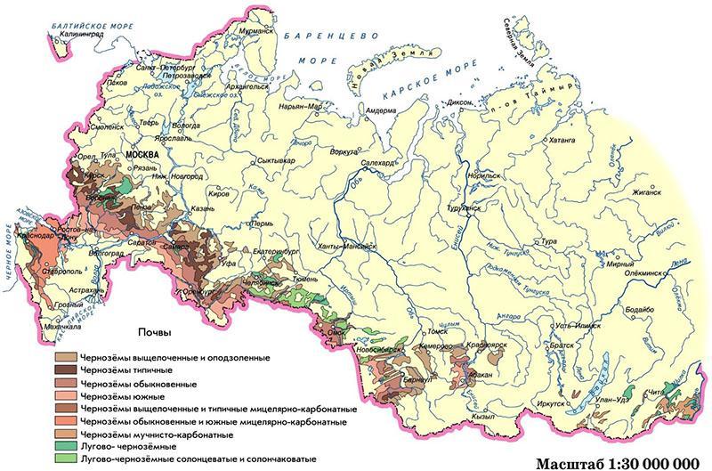 карта типов почв