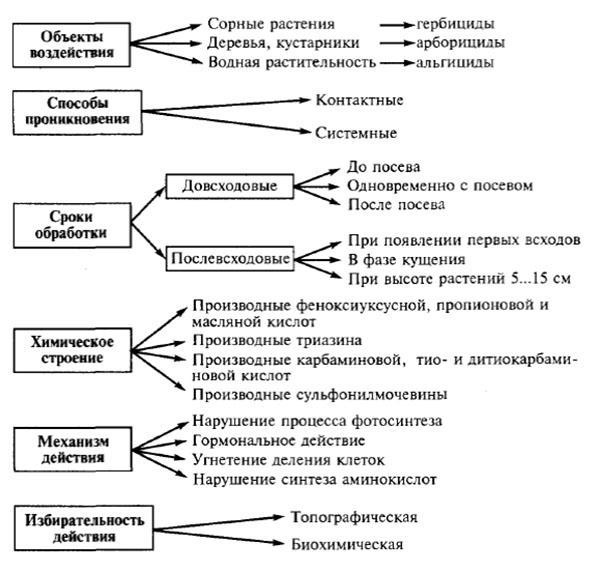 основные виды гербицидов