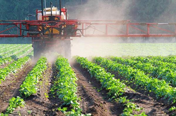 распыление гербицидов на полях