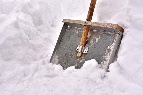 металлическая лопата для снега