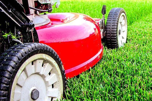 мульчирование газона газонокосилкой