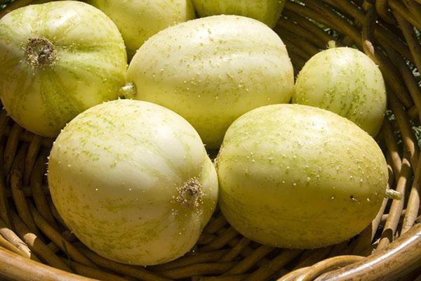 огурец-лимон хрустальное яблоко