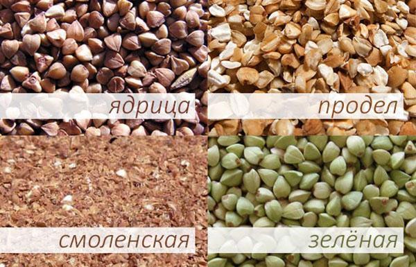 разновидность гречневой крупы