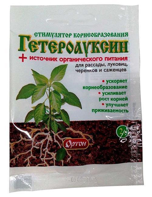 Раствор гетероауксин его действия и применение