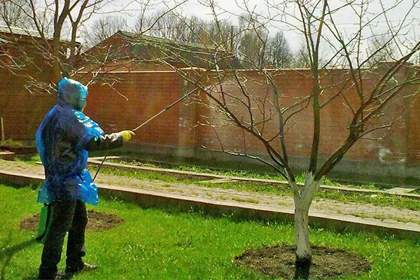 обработка деревьев карбофосом
