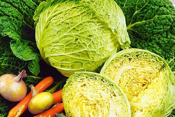 богатый на витамины овощ