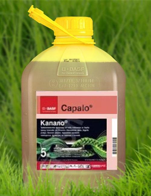 препарат Капало