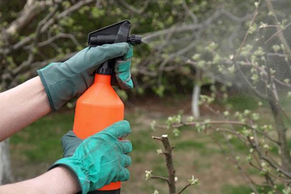 применение гумата калия в саду