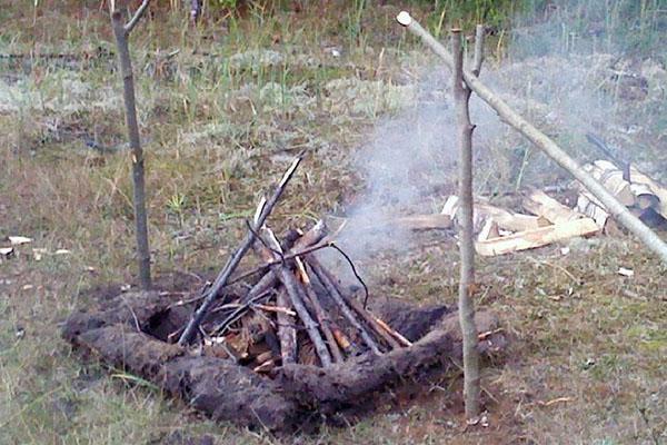 сжигание старого пня